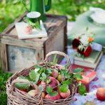 7 nevjerovatnih stvari koje obične jabuke mogu učiniti za naše zdravlje!
