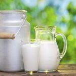 Da li je mlijeko zdravo ili živimo u zabludi?