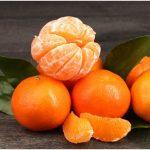 Počela je sezona mandarina