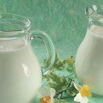 Koje mlijeko treba da pijemo?
